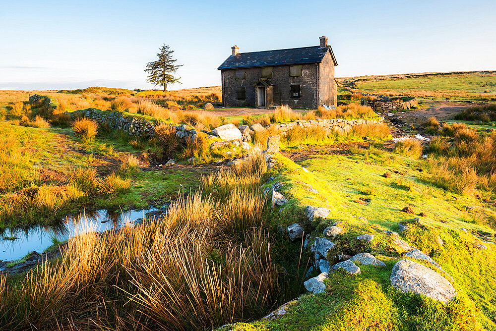 Nuns Cross Farm, Dartmoor National Park, Devon, England, United Kingdom - 1272-74