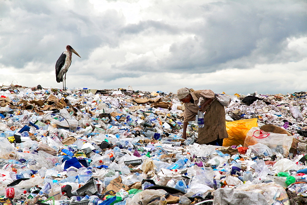 Woman working on one of the world biggest garbage dump in the Dandora slum of Nairobi, Kenya. A vulture is waiting for food.