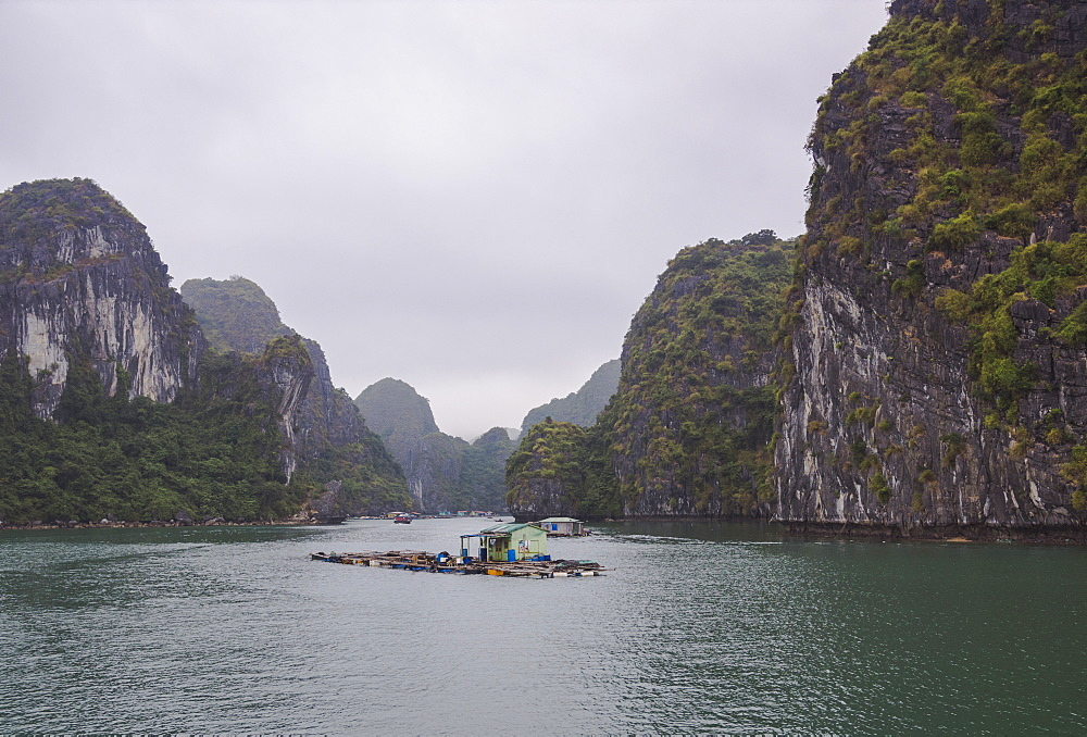 Floating fishing village in the Lan Ha Bay, Cat Ba Island, a typical Karst landscape in Vietnam, Indochina, Southeast Asia, Asia - 1275-81