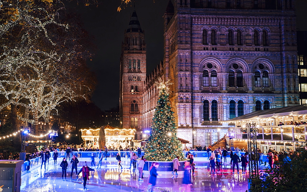 Christmas tree and ice skating rink at night outside the Natural History Museum, Kensington, London, England, United Kingdom, Europe