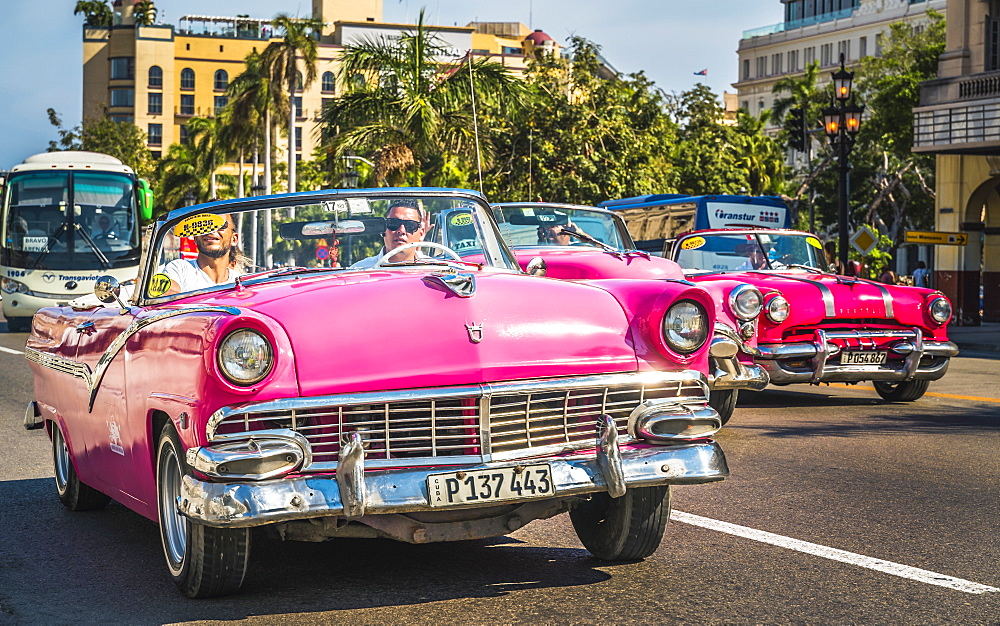 Colourful old American taxi cars driving in Havana, La Habana, Cuba, West Indies, Caribbean, Central America