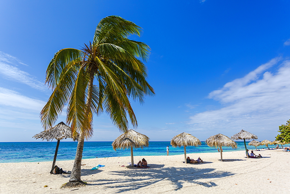 palm trees and umbrellas on the beach Playa Ancon near Trinidad, Trinidad, Cuba, West Indies, Caribbean, Central America