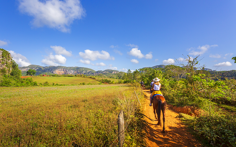 Tourists on a horse tour in Vinales National Park, UNESCO World Heritage Site, Pinar del Rio Province, Cuba, West Indies, Caribbean, Central America