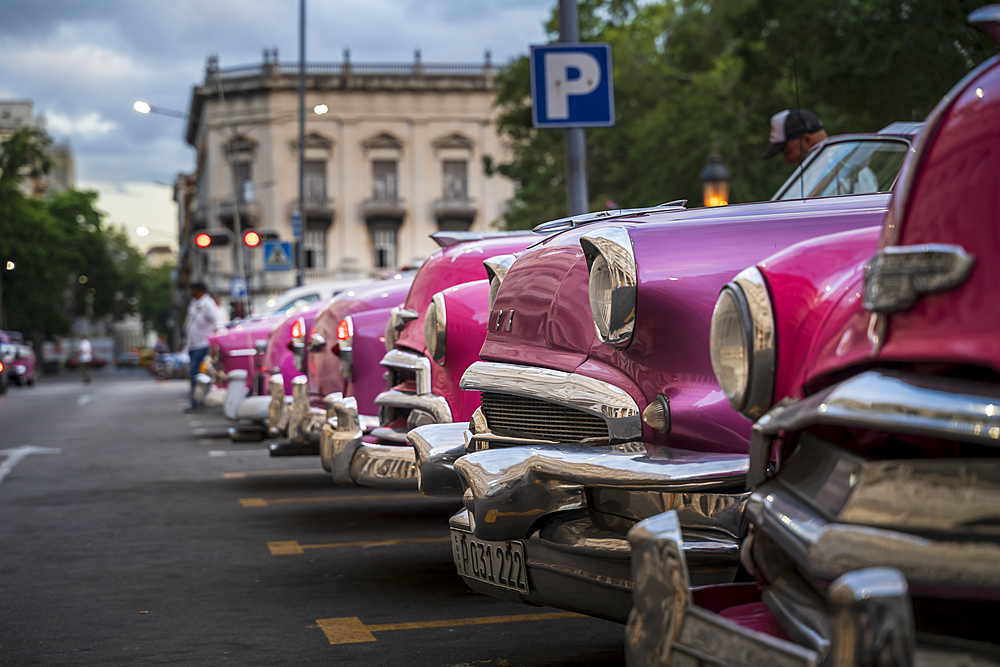 Colourful old American taxi cars parked in Havana at dusk, UNESCO, La Habana, Cuba, West Indies, Caribbean