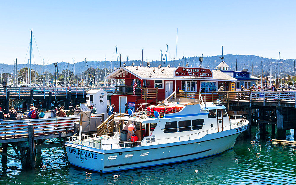Fisherman's Wharf, Monterey Bay, Peninsula, Monterey, Pacific Ocean, California, United States of America, North America