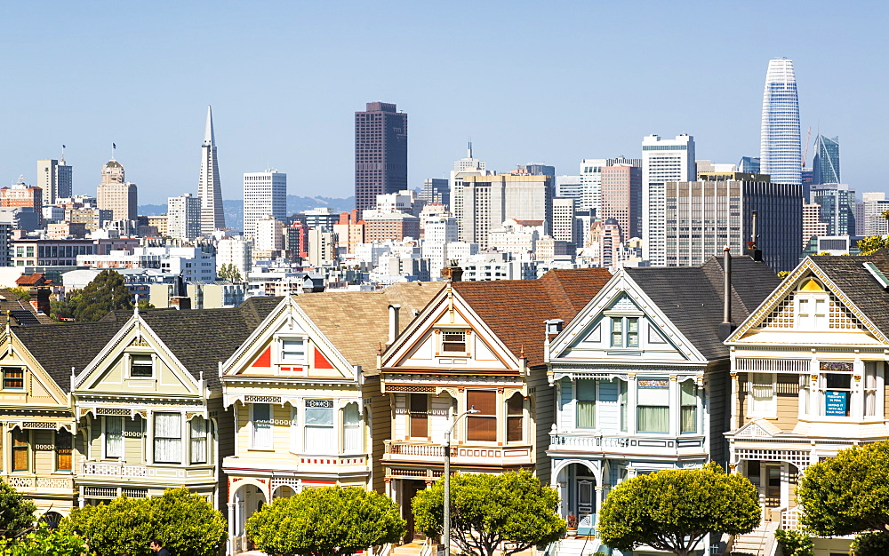 View of Painted Ladies, Victorian wooden houses, Alamo Square, San Francisco, California, United States of America, North