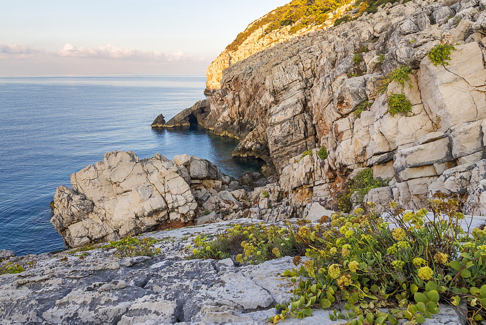 Cape Zakamenica at Mljet Island National Park, Croatia, Europe