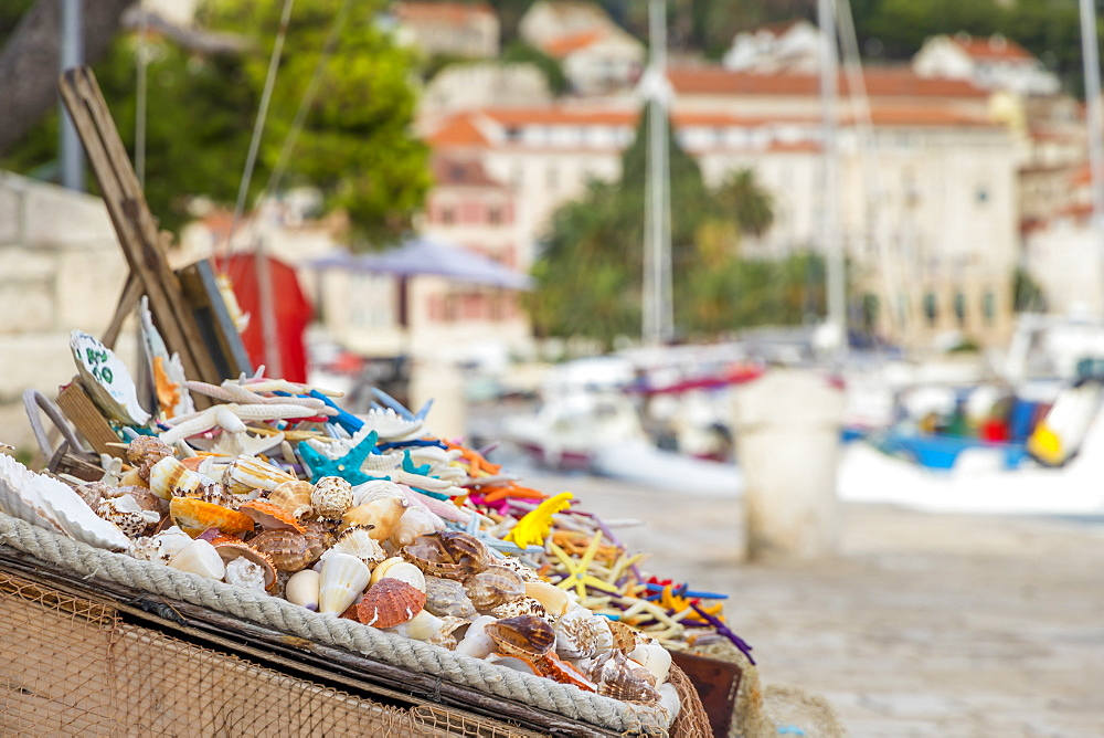 Boxes full of sea shells and sea stars for sale at the port of Hvar Town