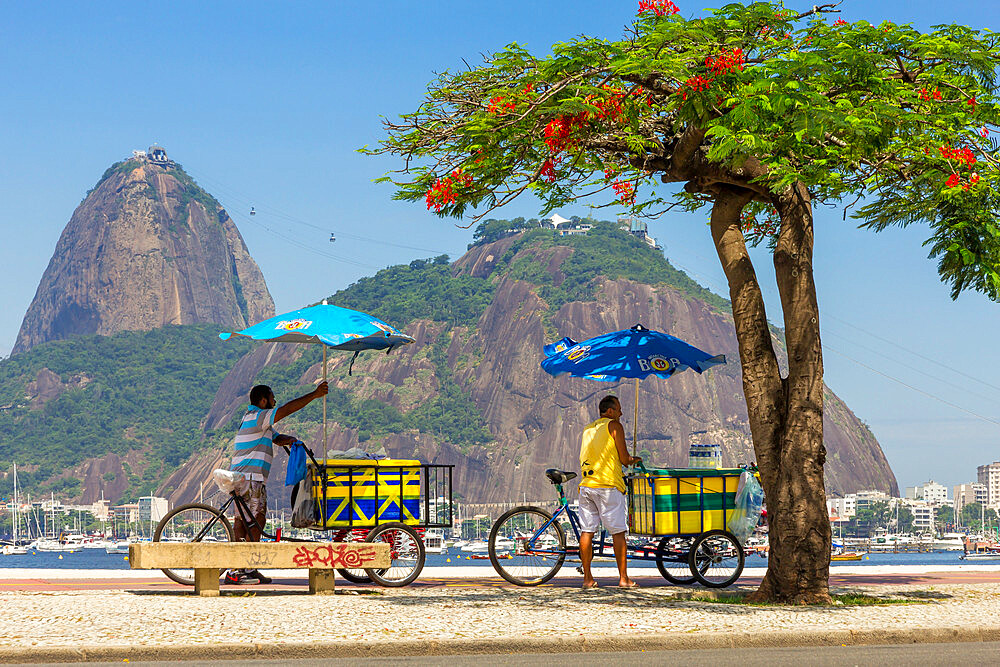 Street vendors standing with their bicycles in Botafogo with view to the Sugar Loaf, Rio de Janeiro, Brazil, South America