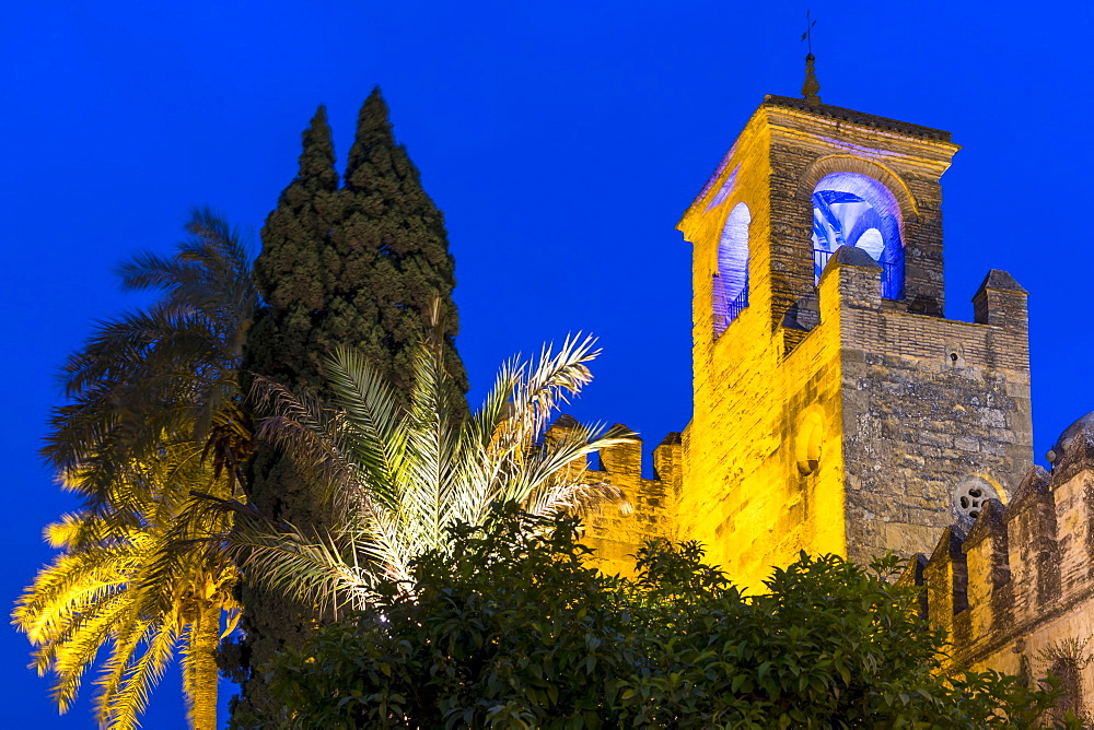 Illuminated tower of the Alcazar de los Reyes Cristianos at dusk, UNESCO World Heritage Site, Cordoba, Andalusia, Spain, Europe