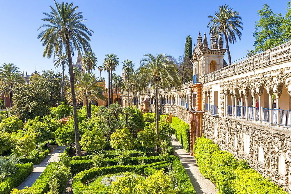 Alcazar Gardens, Seville, Andalusia, Spain, Europe