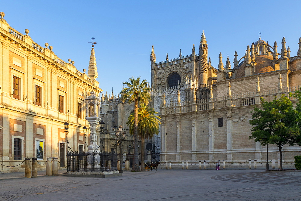 Cathedral of Seville and Archivo de Indias, UNESCO World Heritage Site, seen from Plaza del Triunfo at first sunlight, Seville, Andalusia, Spain, Europe