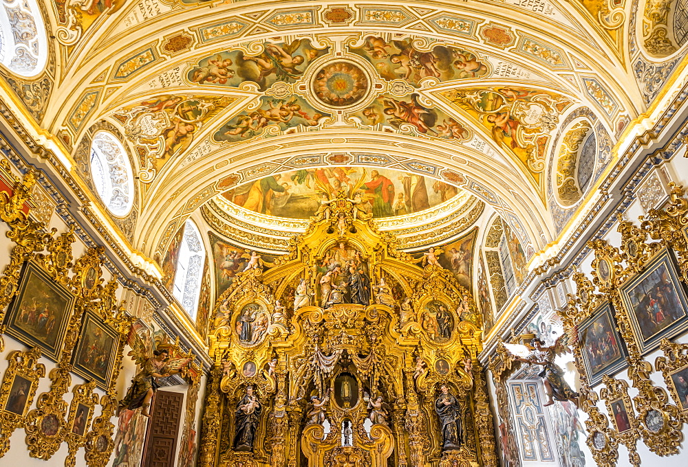 Chapel inside San Luis de los Franceses Church, Seville, Andalusia, Spain, Europe