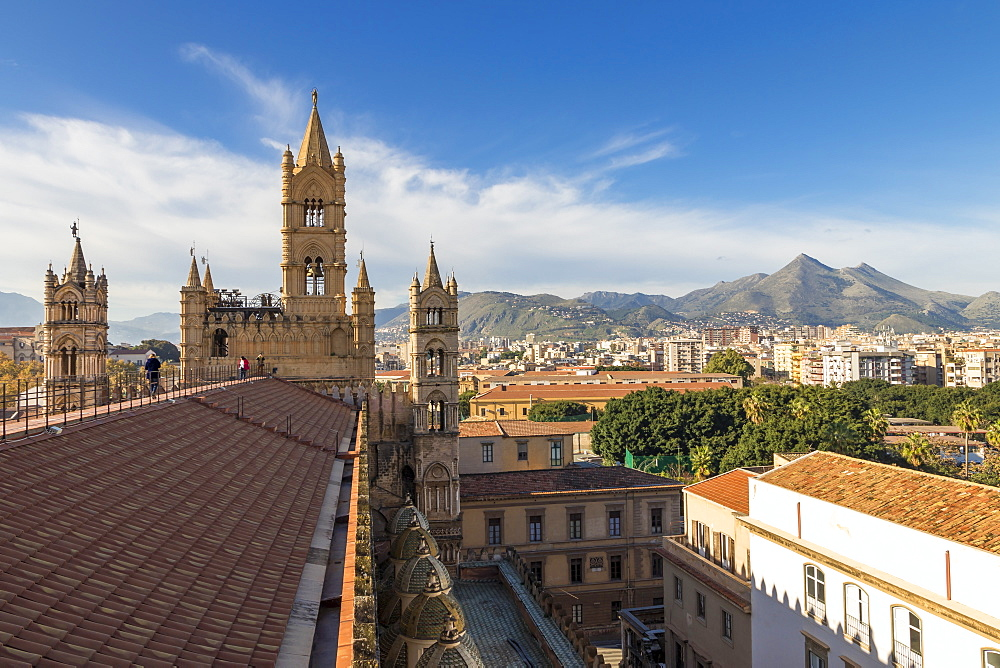 View from the rooftop of Palermo Cathedral over the city centre, Palermo, Sicily, Italy, Europe - 1283-777