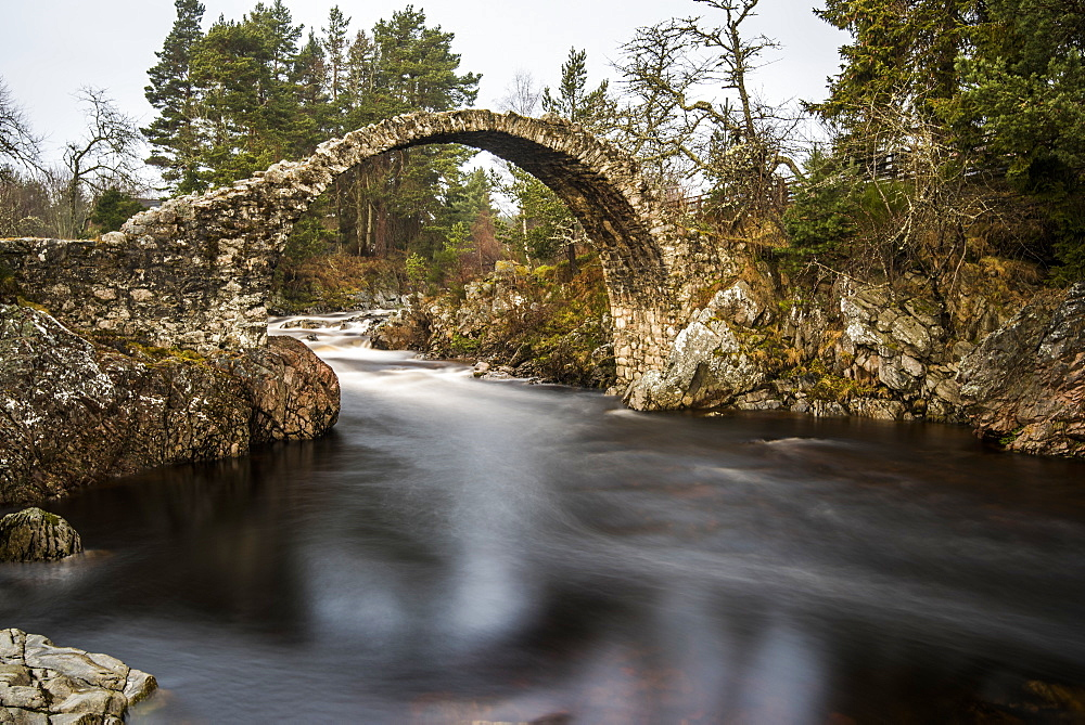 The old packhorse bridge built in 1717 over the River Dulnain in the village of Carrbridge near Aviemore in the Cairngorms, Scotland, United Kingdom, Europe - 1287-23