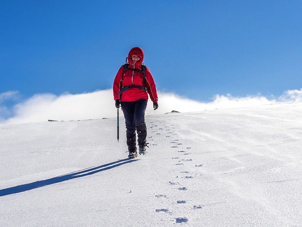 Female winter walker descending a fresh snowy slope in the Cairngorm National Park, Scotland, United Kingdom, Europe