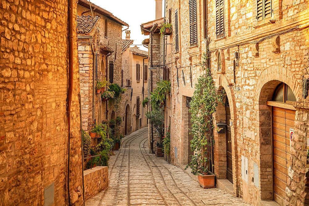 Spello, Perugia, Umbria, Italy