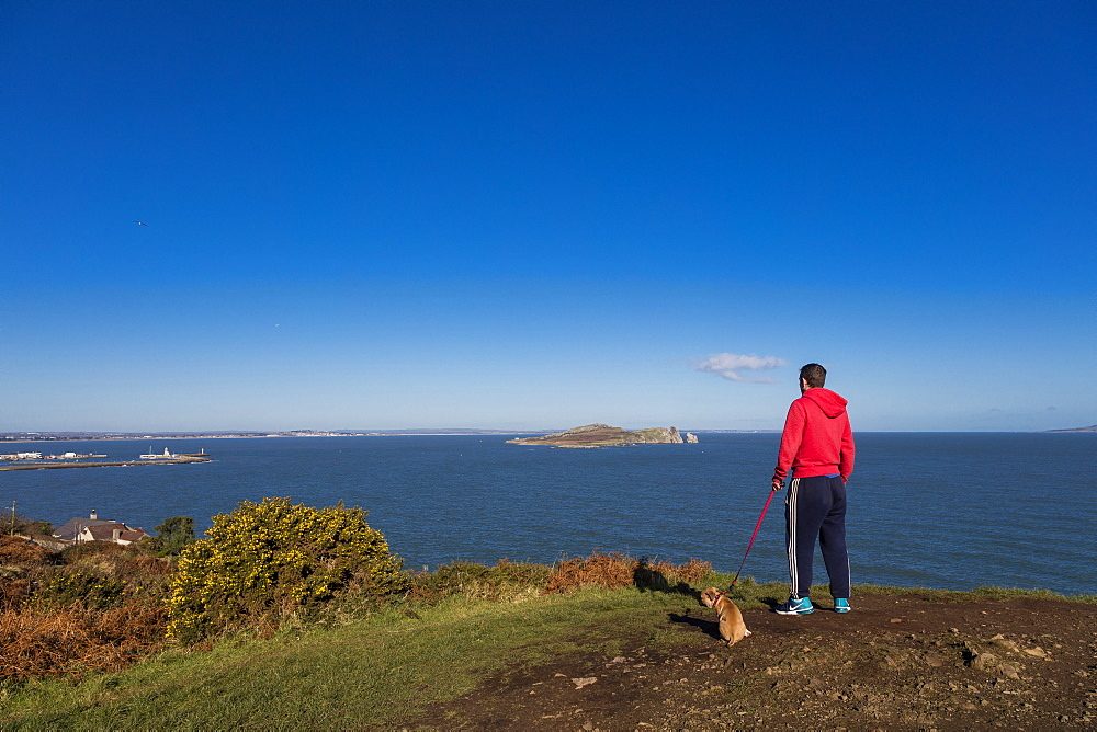 The Cliff Path, Howth, County Dublin, Leinster, Republic of Ireland, Europe