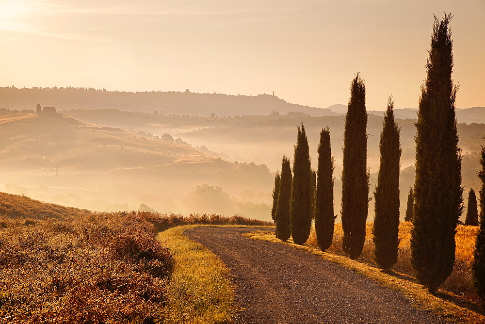 Surroundings, Pienza, Tuscany, Italy, Europe