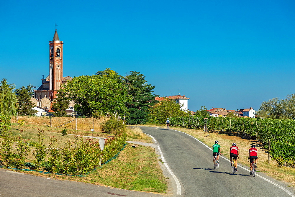 On the Fausto Coppi's roads, Costa Vescovato, Tortona area, Alessandria, Piedmont, Italy, Europe