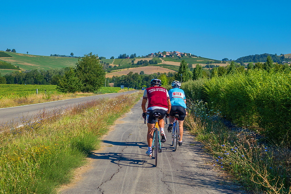 On the Fausto Coppi's roads, the cycling road from Villaromagnano to Castellania, Tortona area, Alessandria, Piedmont, Italy, Europe