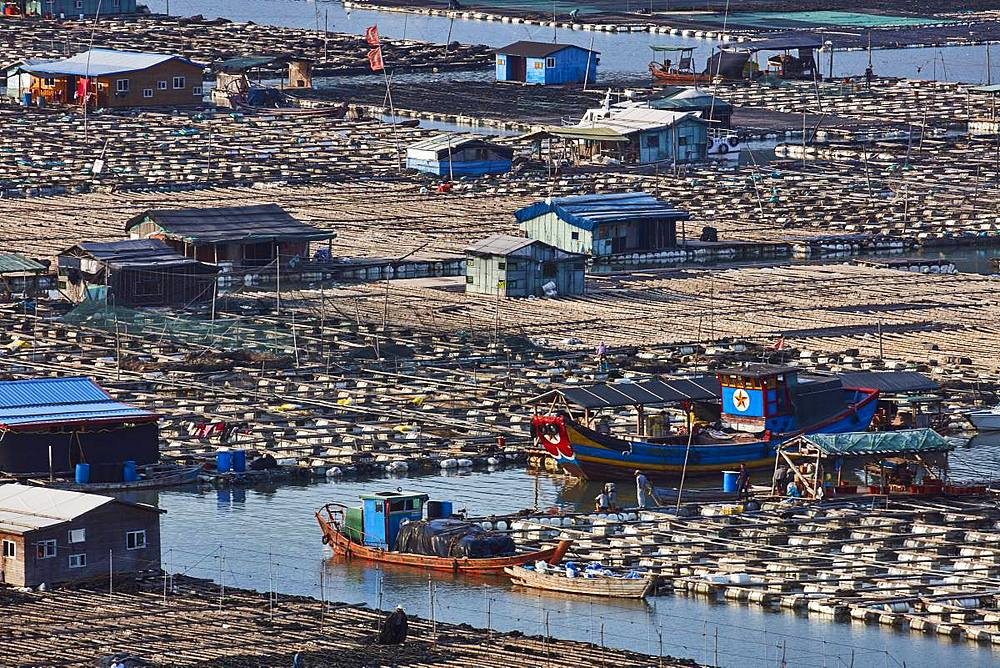 Floating village, Dong An, Fujian, China, Asia - 1294-40