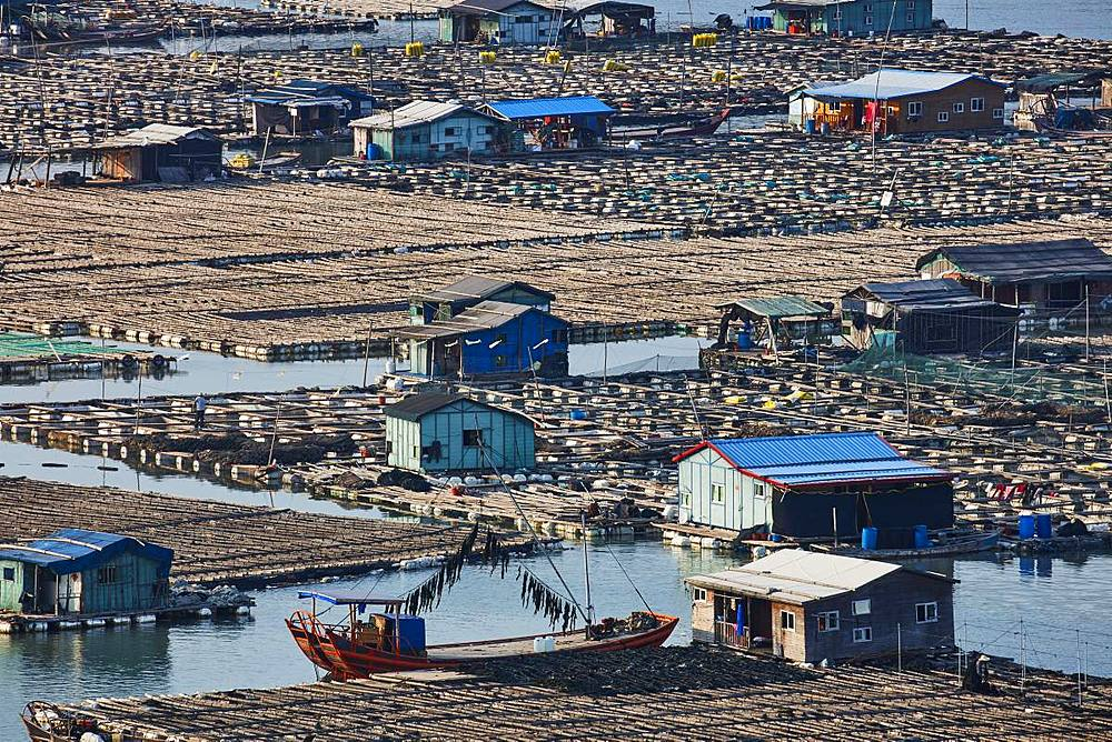 Floating village, Dong An, Fujian, China, Asia - 1294-41