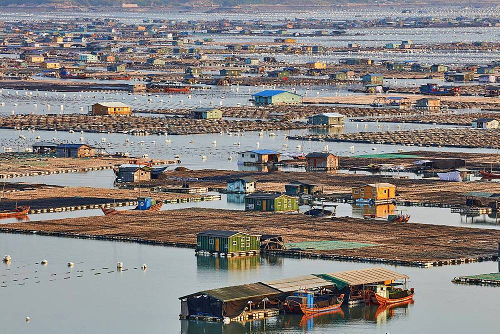 Floating village, Dong An, Fujian, China, Asia - 1294-43