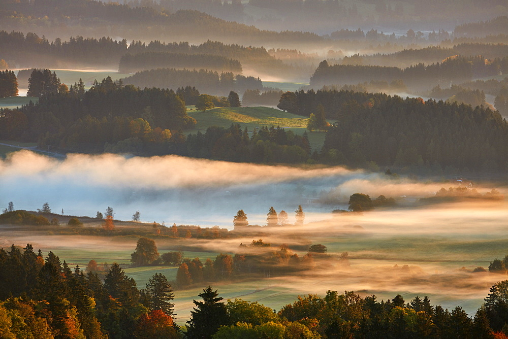 Morning autumn fog above lake Hassloch in the Allgau, seen from Auerbeg hill, Bavaria, Germany, Europe - 1294-73
