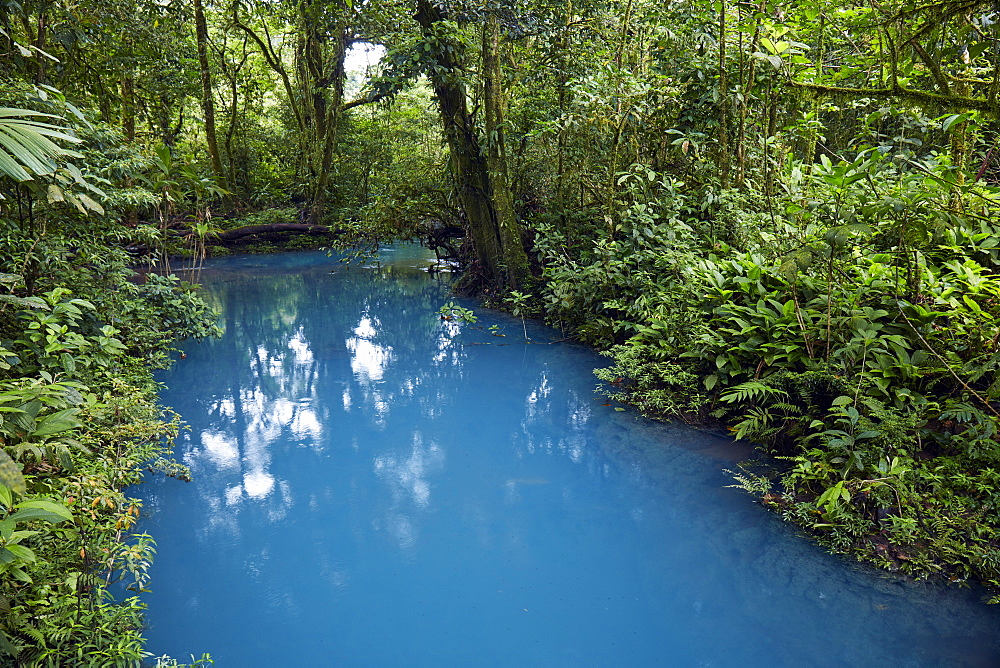 Rio Celeste in the Tenorio Volcano National Park  shows a bright blue colour like no other river due to a chemical reaction, Tenorio, Costa Rica, Central America - 1294-76
