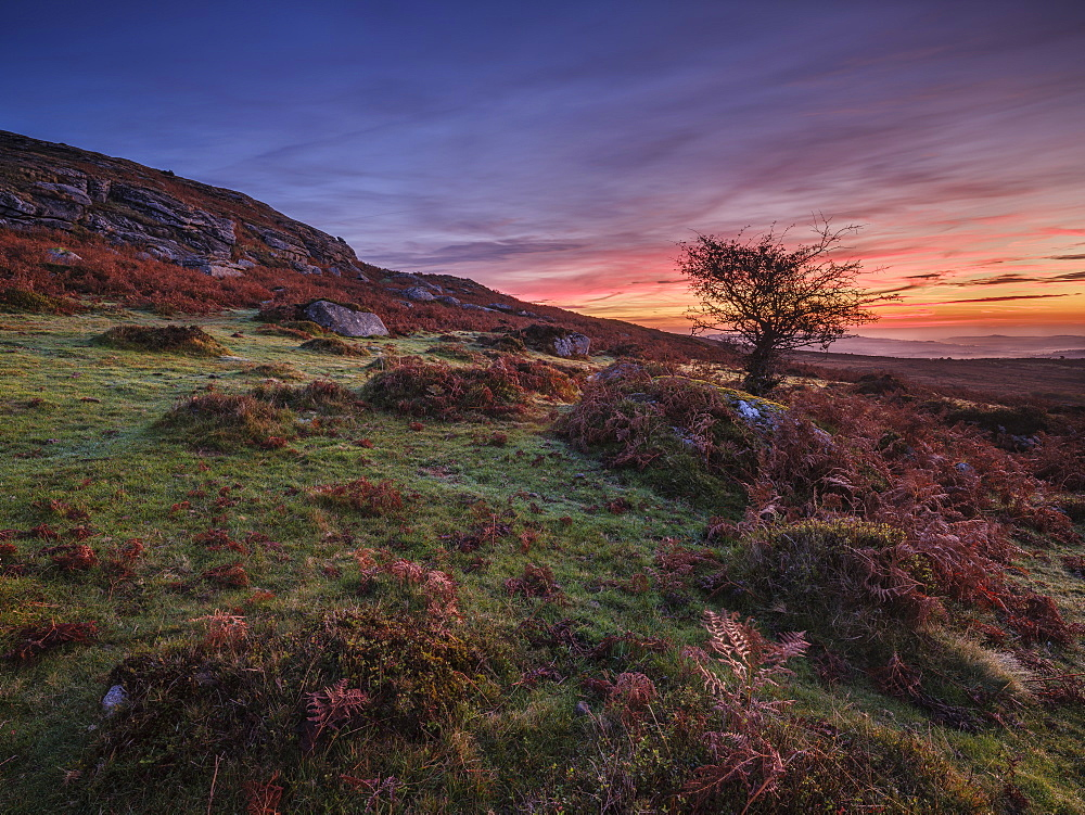 Twilight on the slopes below Saddle Tor with mist in the Teign Valley, Dartmoor National Park, Bovey Tracey, Devon, England, United Kingdom, Europe - 1295-114