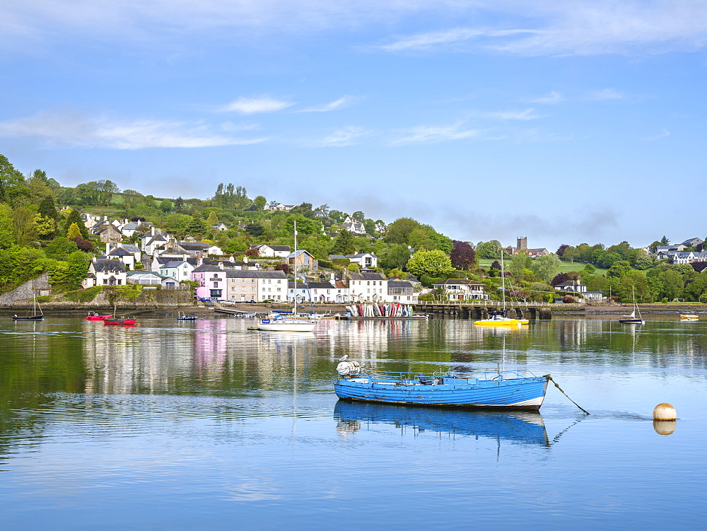 The scenic village of Dittisham on the River Dart early on a summer morning, Dittisham, Devon, England, United Kingdom, Europe - 1295-45