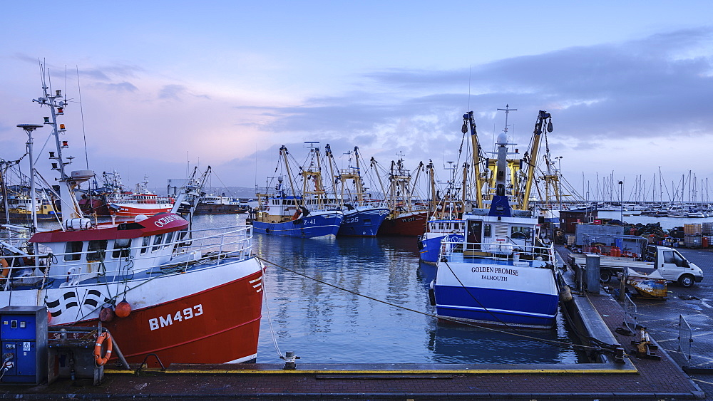 Trawlers moored alongside in the fishing port of Brixham, Devon, England, United Kingdom, Europe - 1295-61