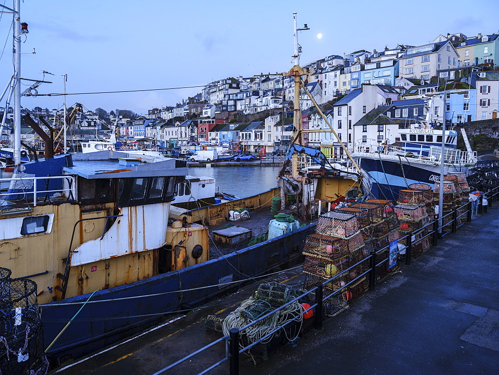 The colourful houses on the hillside above the harbour of Brixham, Devon, England, United Kingdom, Europe - 1295-67