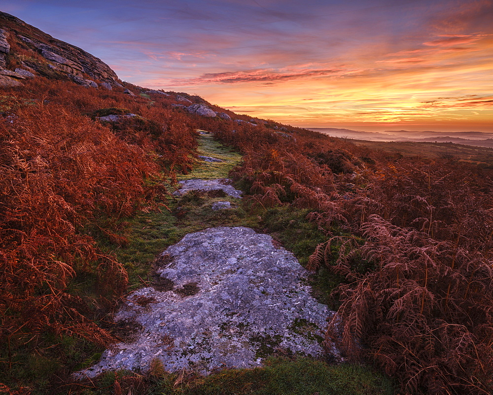 Twilight on the slopes below Saddle Tor with mist in the Teign Valley, Dartmoor National Park, Bovey Tracey, Devon, England, United Kingdom, Europe - 1295-99