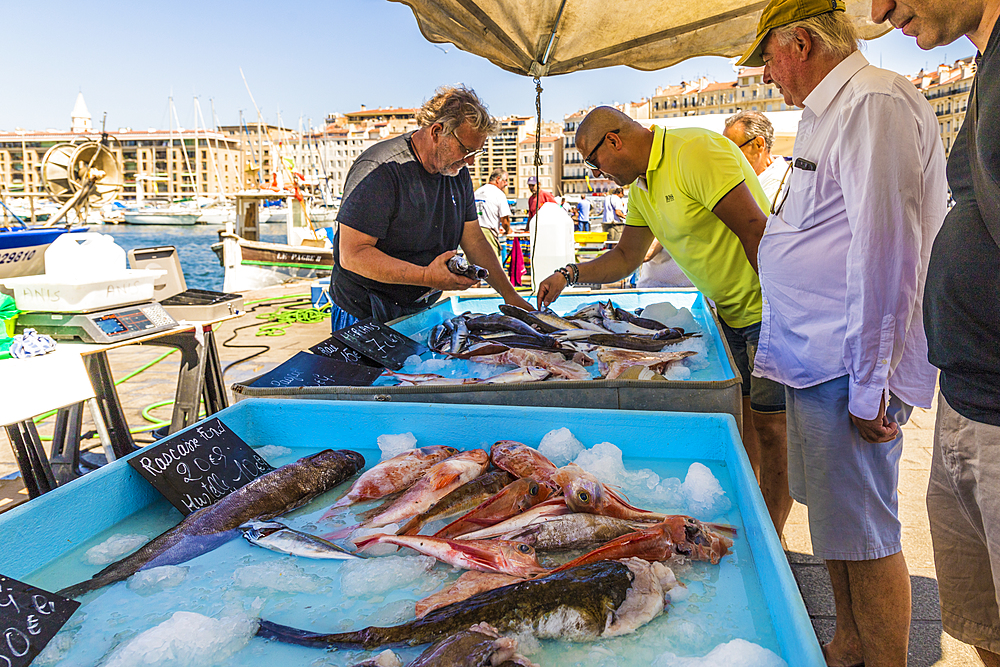 Fish market in the Old port in Marseille, Bouches du Rhone, Provence, Provence Alpes, Cote d'Azur, France, Mediterranean, Europe