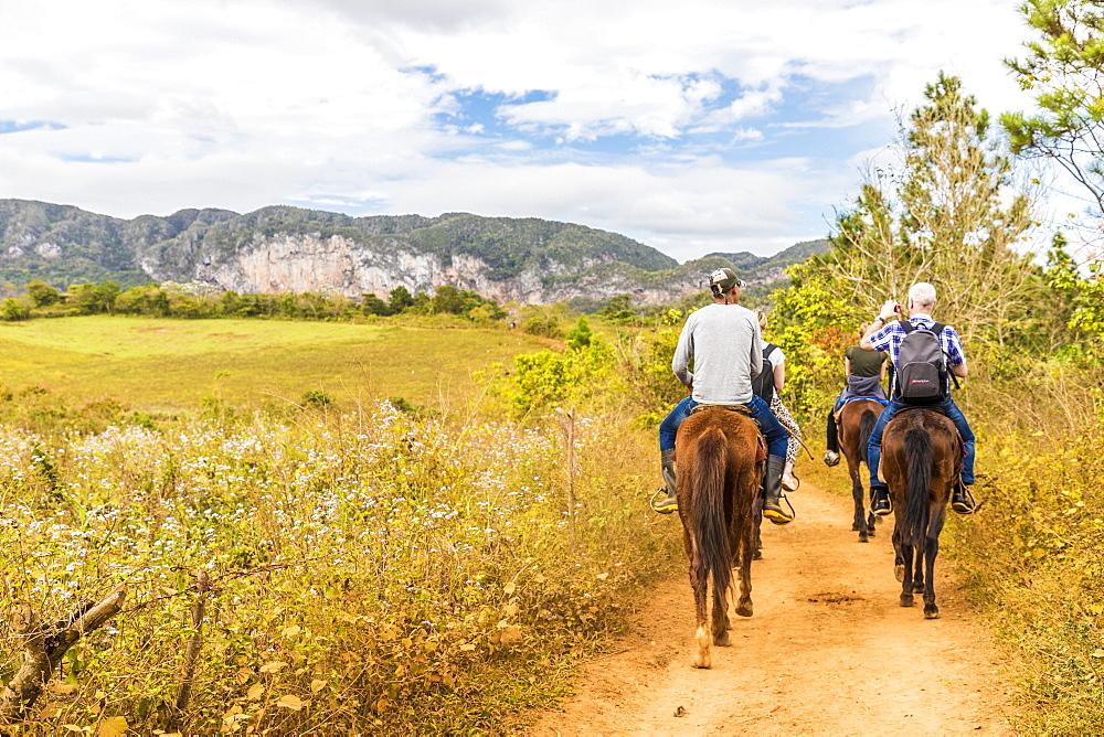Tourists on a horse tour in Vinales National Park, UNESCO World Heritage Site, Vinales Valley, Vinales, Cuba, West Indies, Caribbean, Central America
