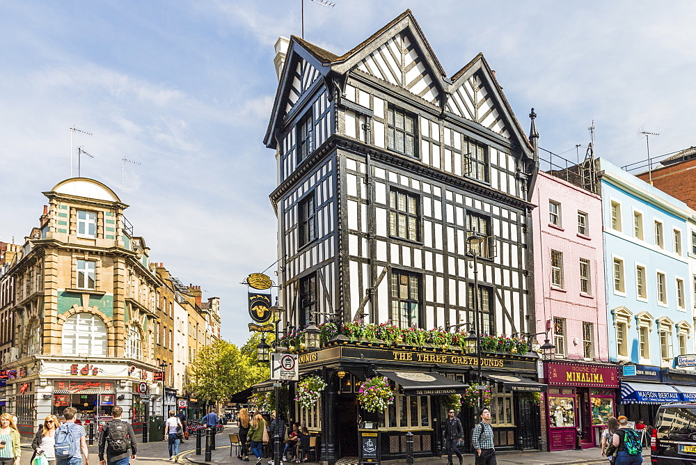 The Three Greyhounds, a typical London pub, in Soho, London, England, United Kingdom, Europe. - 1297-209