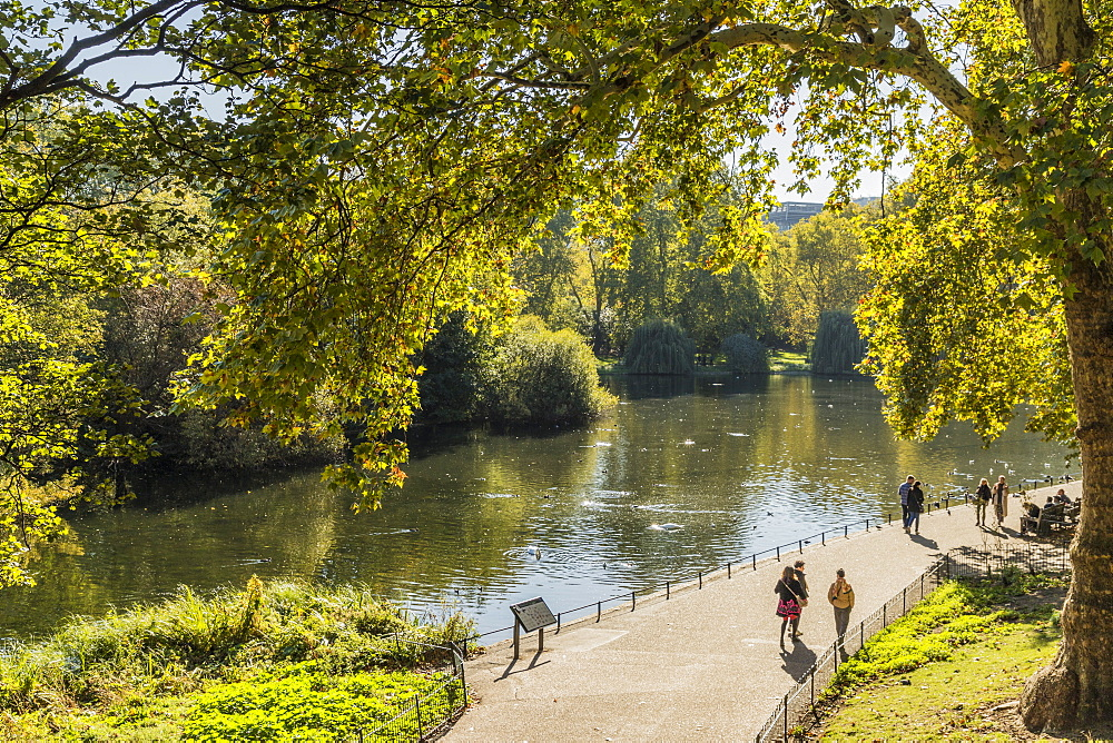A view of St. James's Park lake in St. James's Park, London, England, United Kingdom, Europe - 1297-419