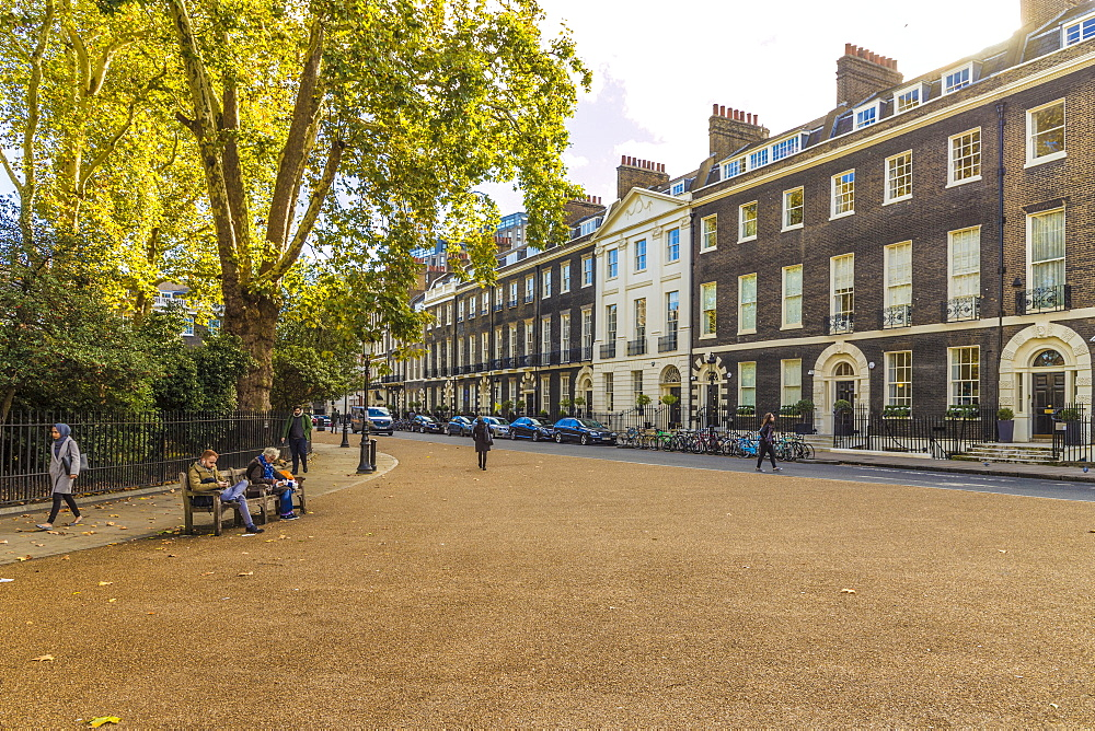 The beautiful Georgian architecture in Bedford Square in Bloomsbury in London, England, United Kingdom, Europe. - 1297-463