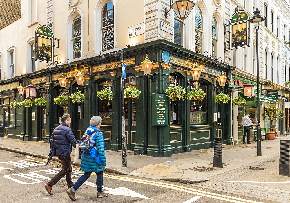 The Plough pub in Bloomsbury in London, England, United Kingdom, Europe. - 1297-467