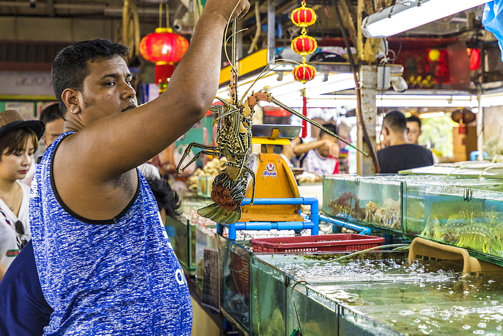 Live seafood for sale at the indoor Banzaan food market in Patong, Phuket, Thailand, Southeast Asia, Asia