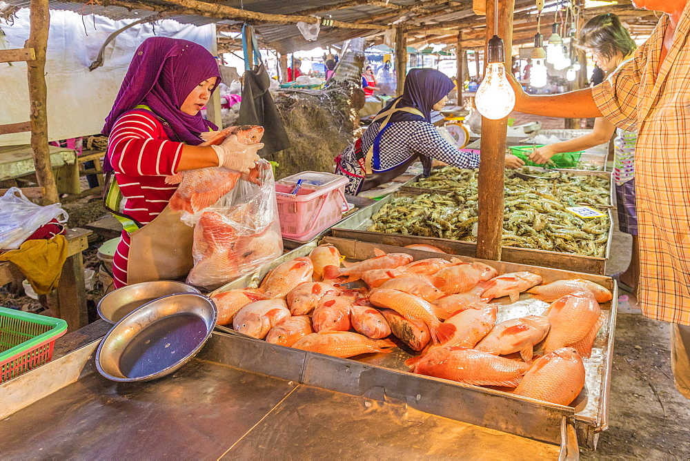 Fresh seafood for sale at the local market in Ao Nang, Krabi Province, Thailand, Southeast Asia, Asia.
