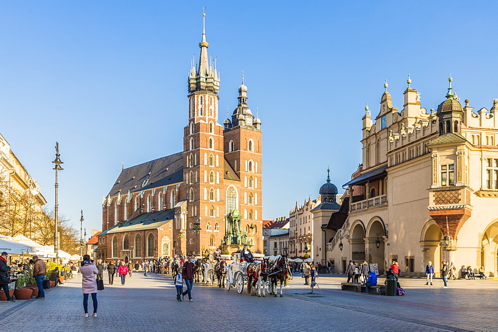 St. Mary's Basilica in the medieval old town, UNESCO World Heritage Site, Krakow, Poland, Europe