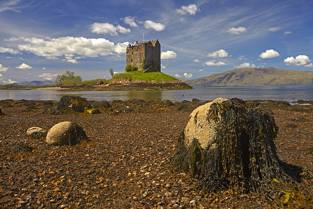 Castle Stalker on Loch Linnhe, Port Appin, Argyll, Scotland, United Kingdom, Europe.