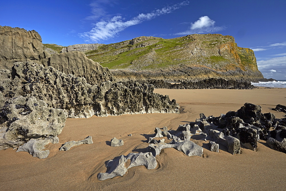 Eroded limestone rocks at Mewslade Bay, Gower, Wales, United Kingdom, Europe