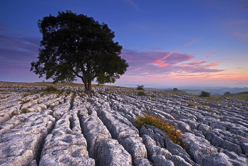 Sunset over the limestone pavement at Malham Lings, near Malham, North Yorkshire, England, United Kingdom, Europe