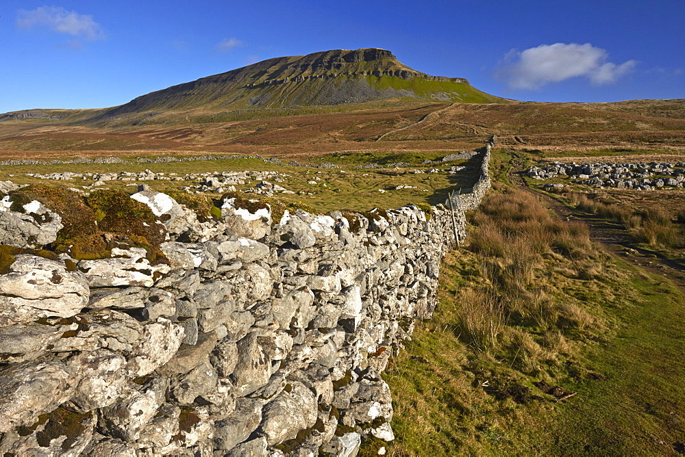 A view of Penyghent in Ribblesdale, Yorkshire Dales National Park, North Yorkshire, England, United Kingdom, Europe