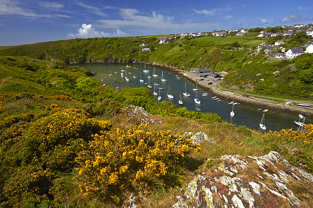 The inlet and harbour at Solva, Pembrokeshire, Wales, United Kingdom, Europe.