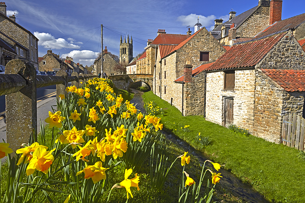 Spring at Helmsley in the North York moors, North Yorkshire, Yorkshire, England, United Kingdom, Europe - 1298-131